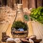 Mini-terrario-garrafinha-amor-p58-garrafa
