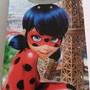 Sacola-boca-palhaco-ladybug-01-unid-lady-bug
