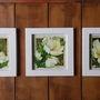 Trio-de-quadros-brancos-de-flores