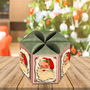 Caixa-star-top-box-natal-vintage-arquivo-silhouette-box-candy