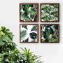 Quateto-de-quadros-de-flores-com-vidro-tam-34-x-34-cm-cada