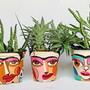 Vaso-para-plantas