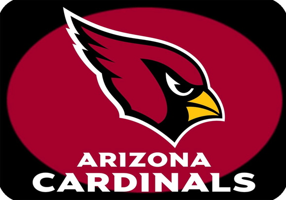 Placa Decorativa NFL - Arizona Cardinals
