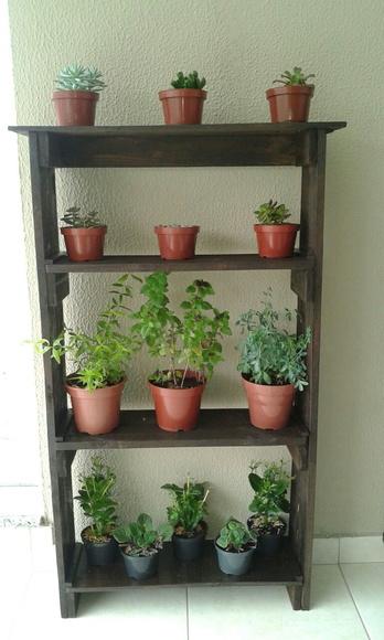 Plantas elo7 for Estantes para plantas exteriores