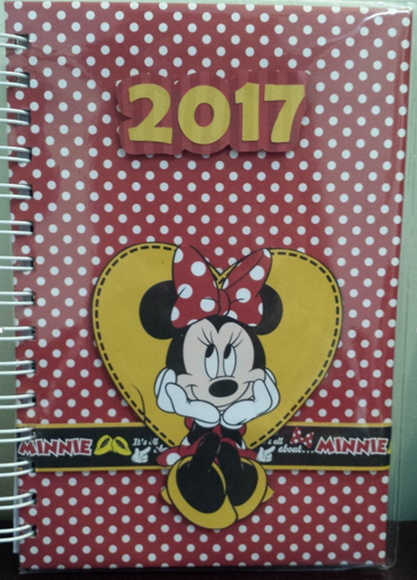 Agenda 2017 - Minnie Disney