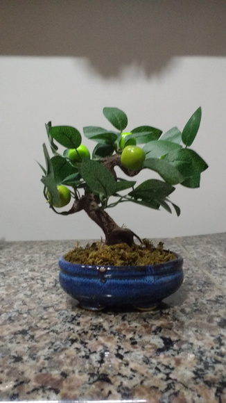 Bonsai Fruta V artificial