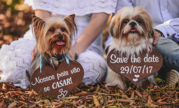 Placas Save the Date Rústica p/ 2 PETs