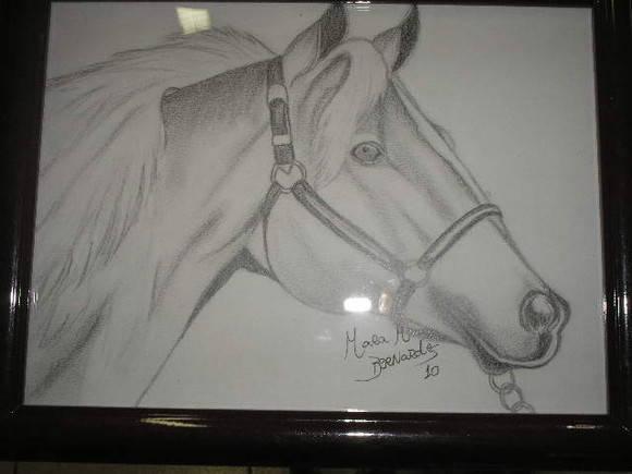 Desenho Em Grafite Cavalo Elo7