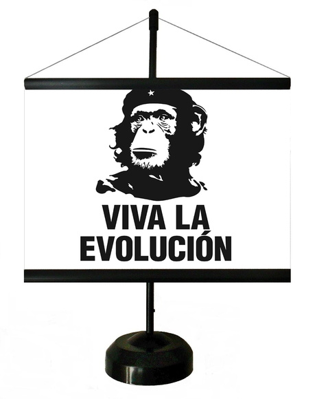 * MINI BANNER - VIVA LA EVOLUTION