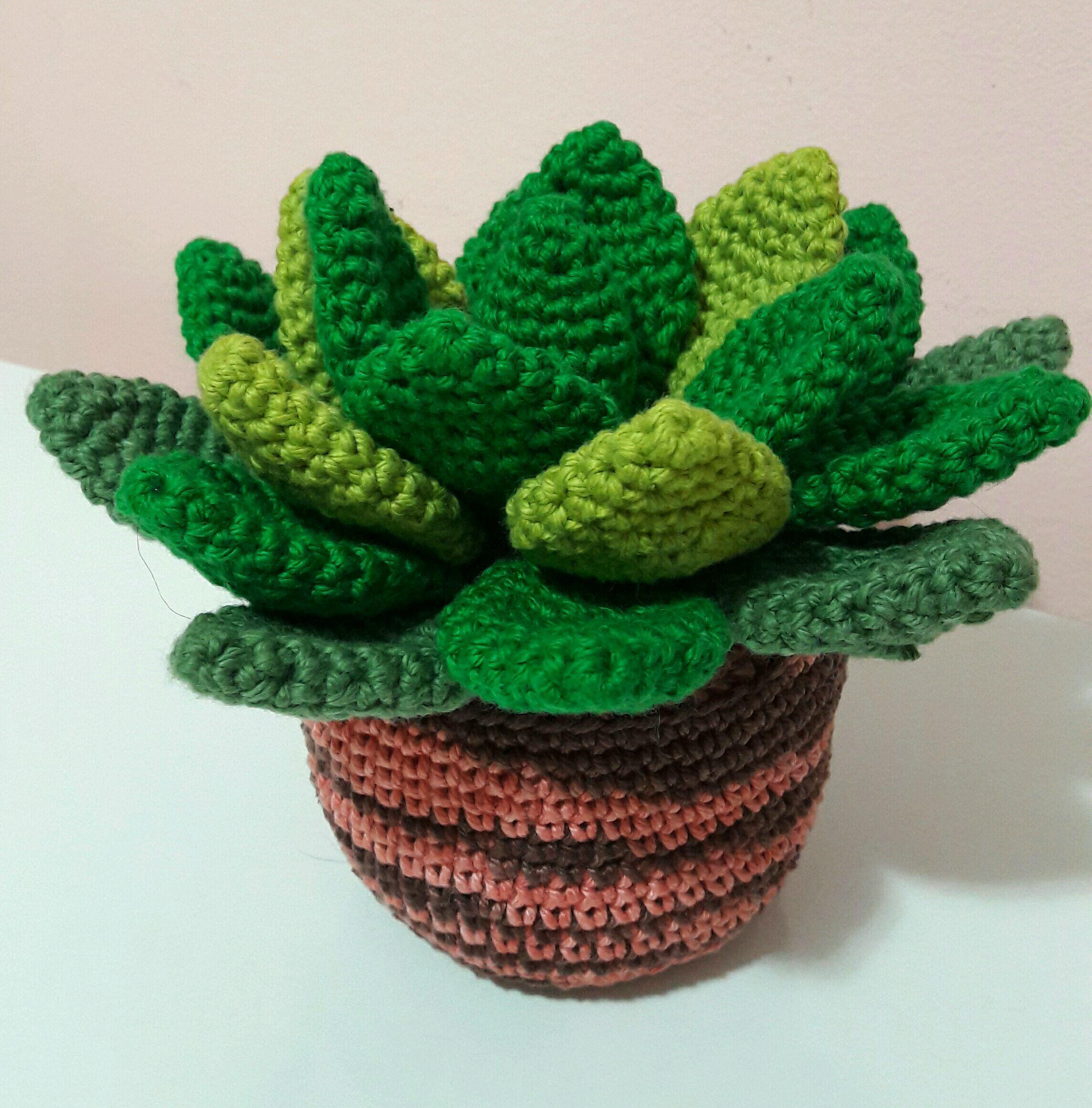 Vaso de suculentas amigurumi. Suculentas de crochê. | Christmas ornaments,  Ornaments, Decor | 2321x2288