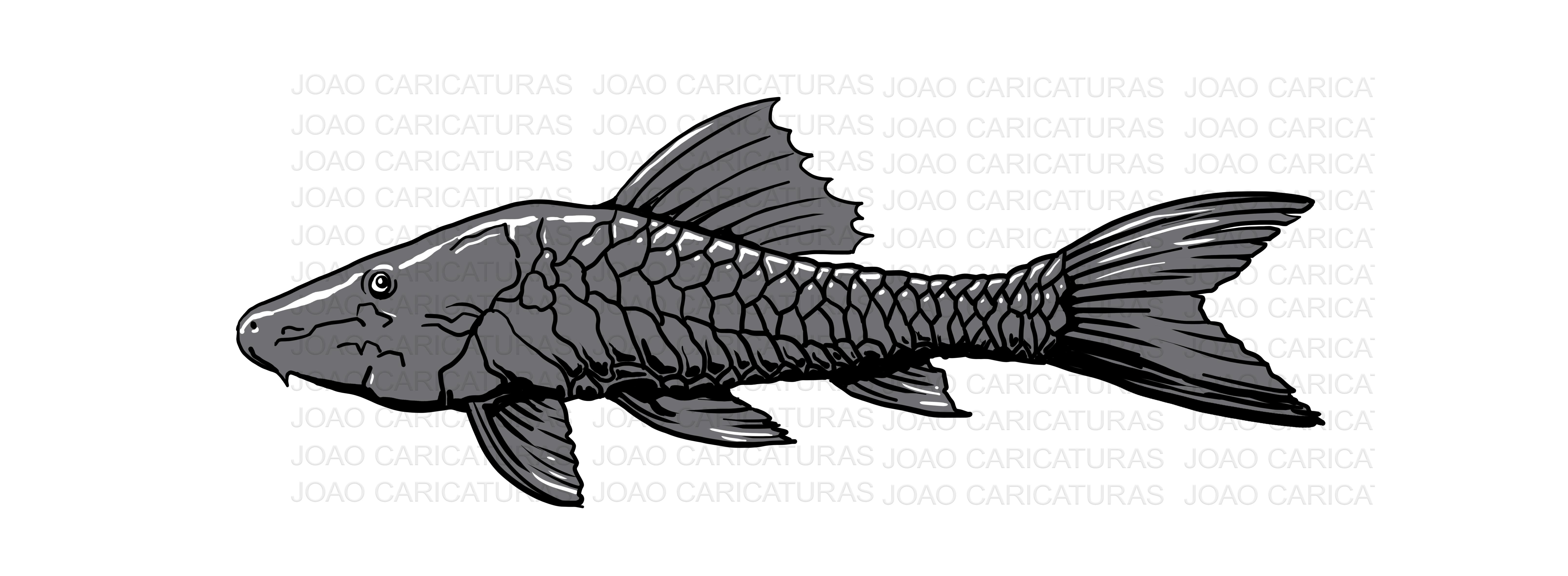 Desenho Peixe Cascudo Preto No Elo7 Joao Caricaturas E Desenhos