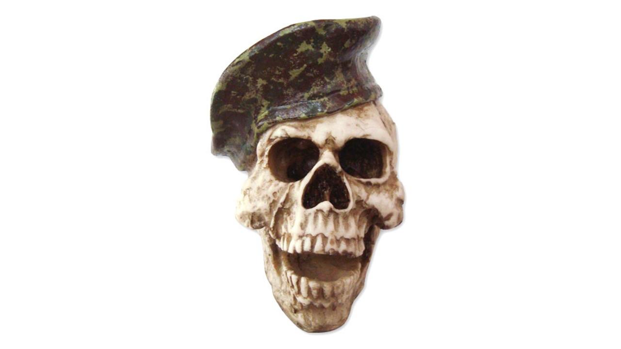 36518404149aa Cranio em Resina Boina