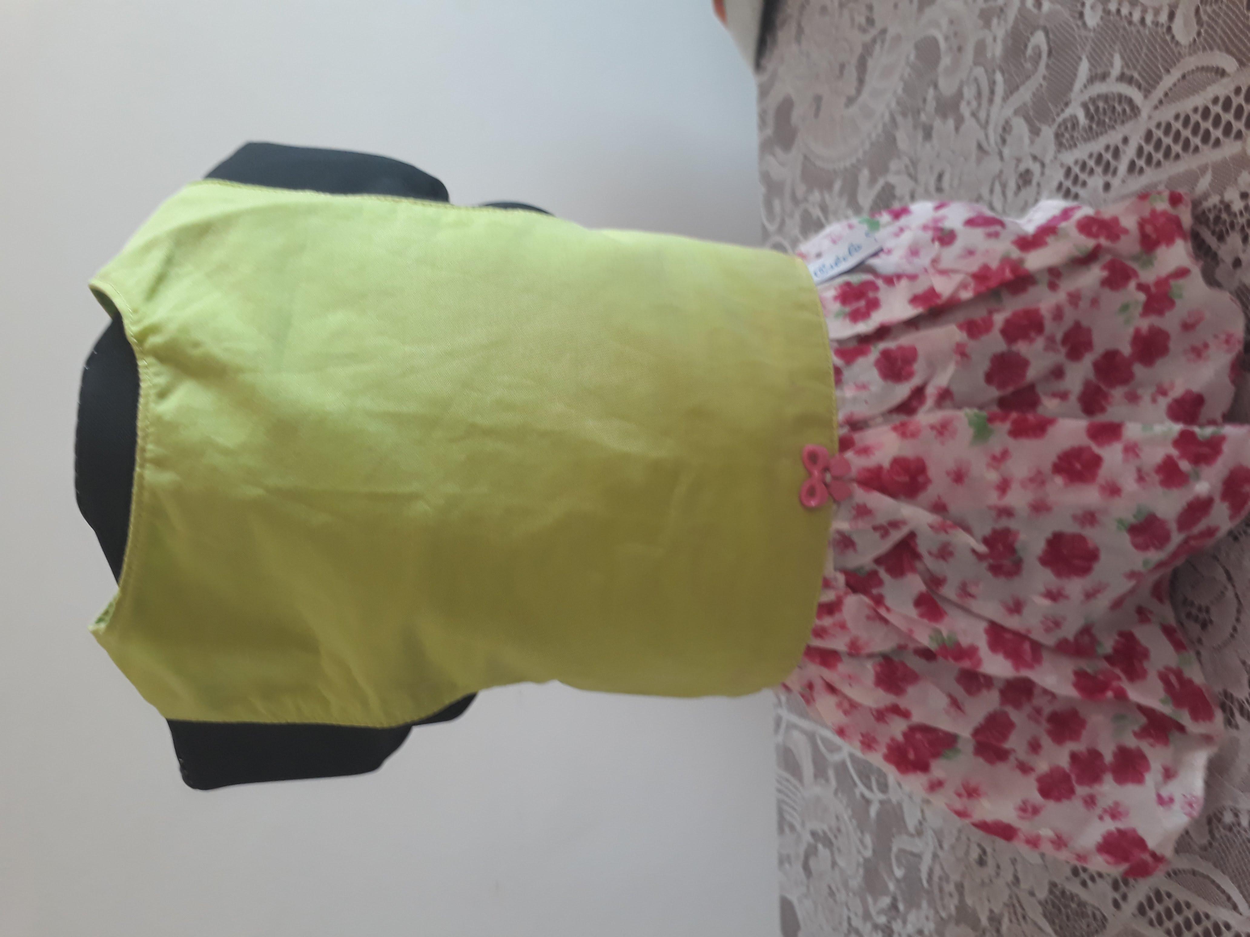 Vestido para Cachorro Time  490974a8faefa