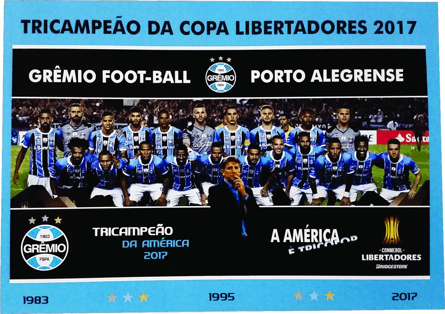 f146ff33d4 Libertadores da America