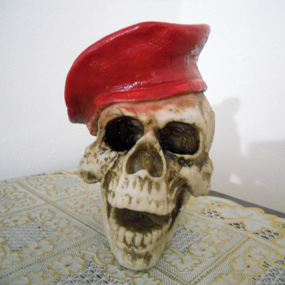 Cranio em Resina Boina  178880bcec3