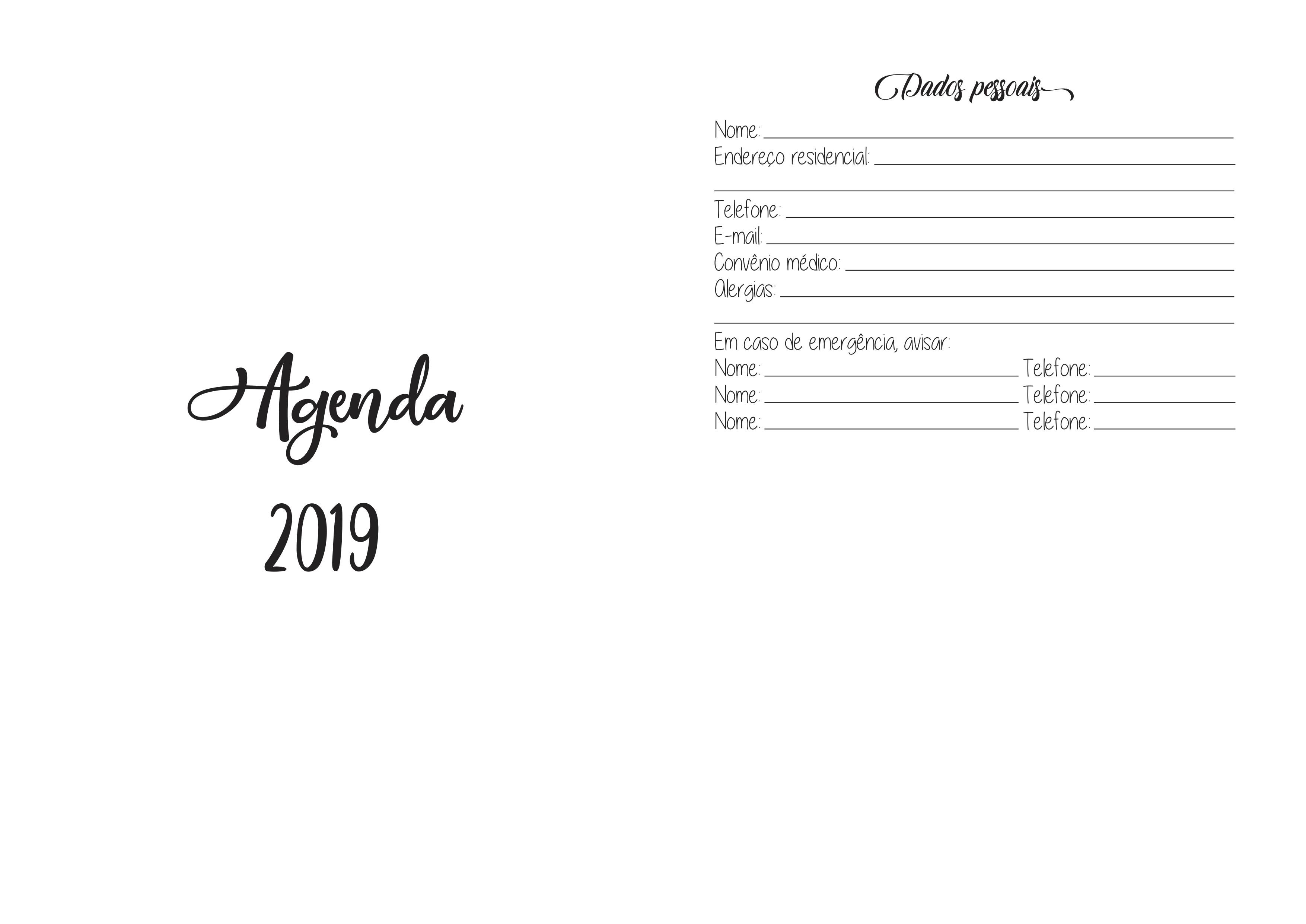Agenda 2019 Modelo Padrão Diário