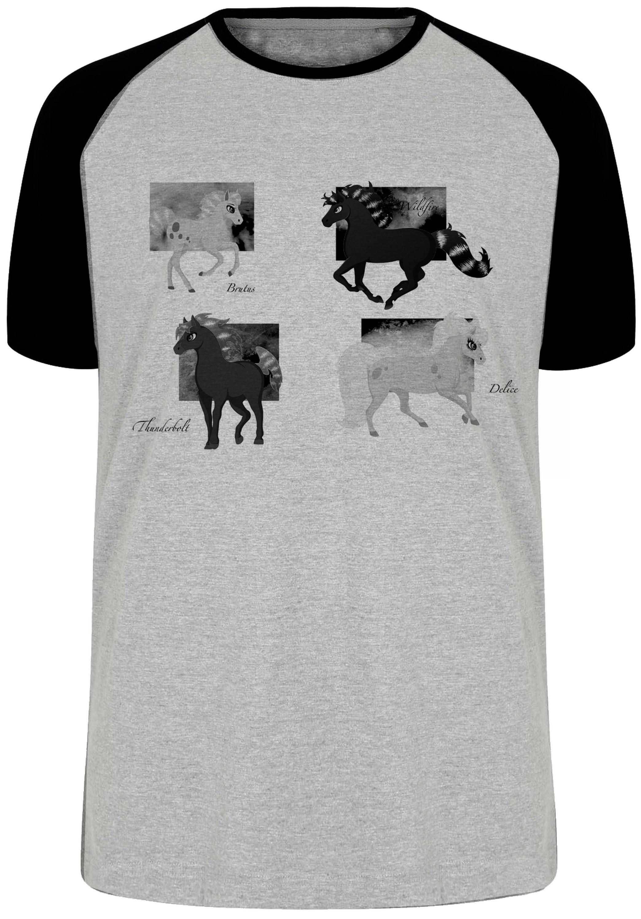 b2c791c01c camiseta blusa 4 cavalos cavalo de fogo princesa sarah no Elo7 ...