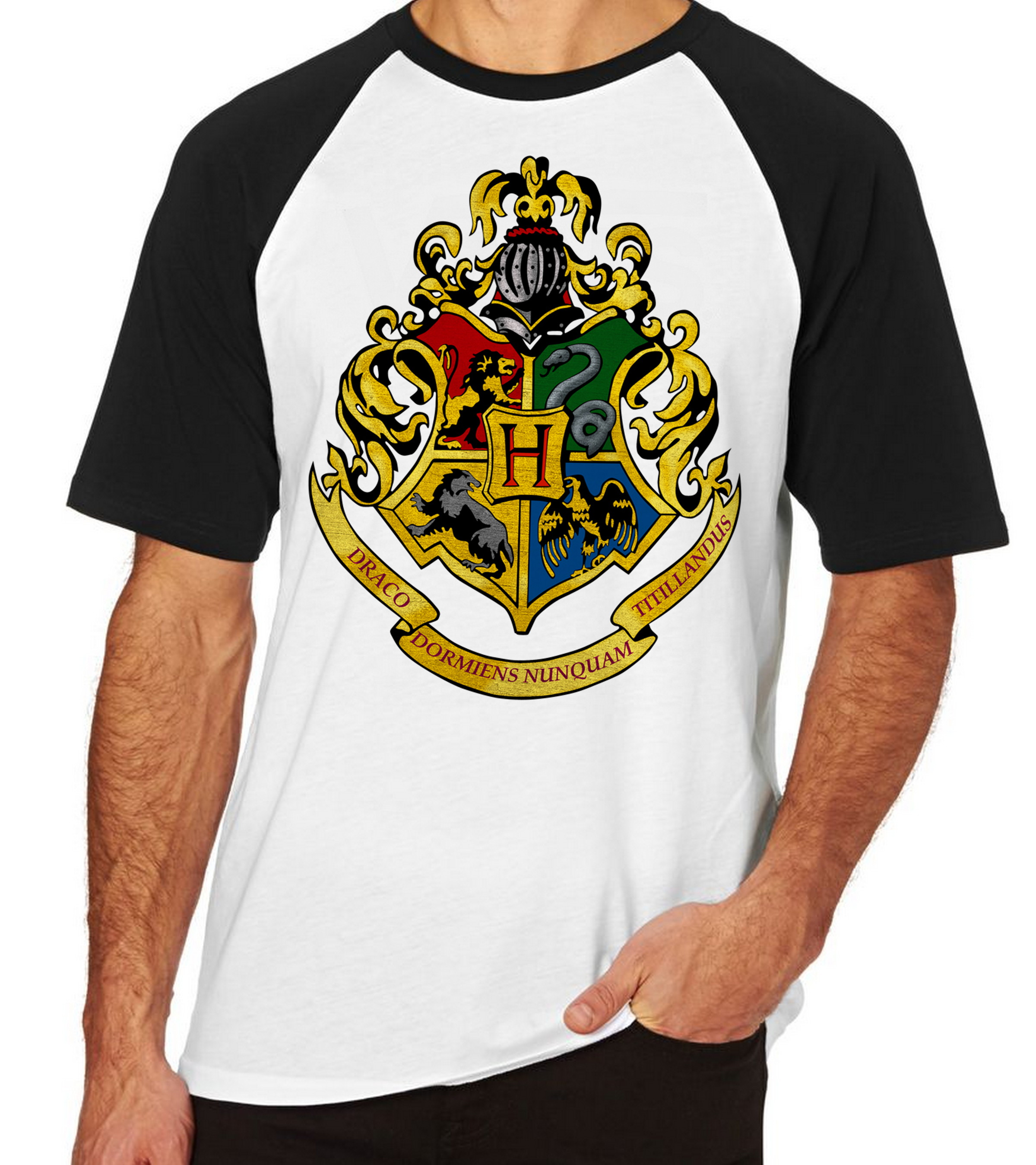 Camiseta Blusa Hogwarts Simbolo Harry Potter Colorido No Elo7