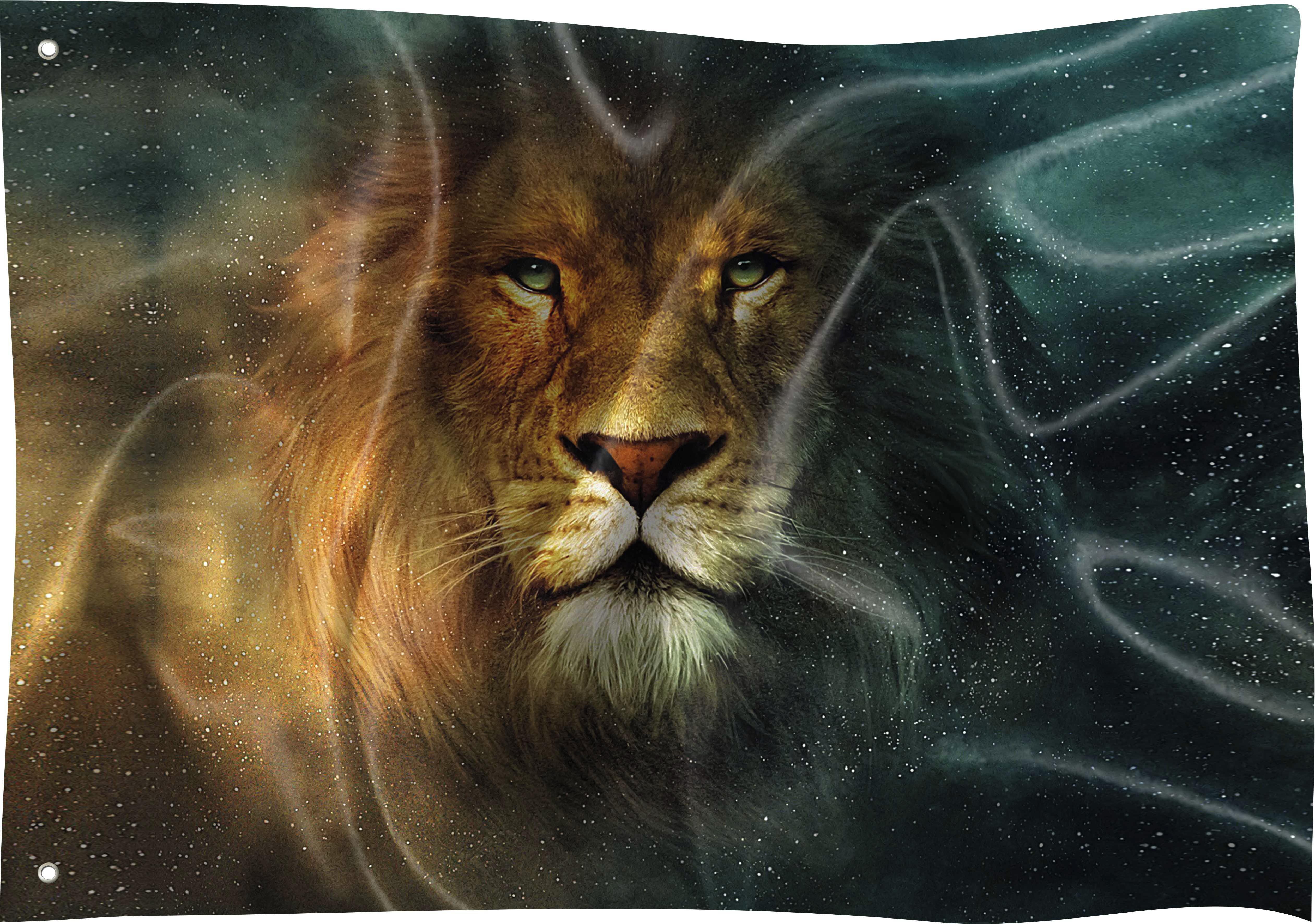 Bandeira Personalizada Animal Leao De Juda Selva Rei 01 No Elo7