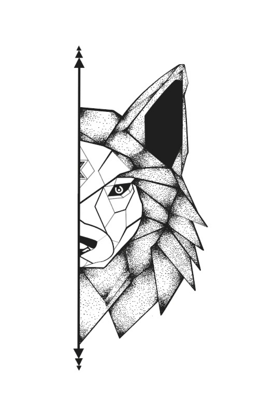 Ilustracao Lobo No Elo7 Sara 1008b52