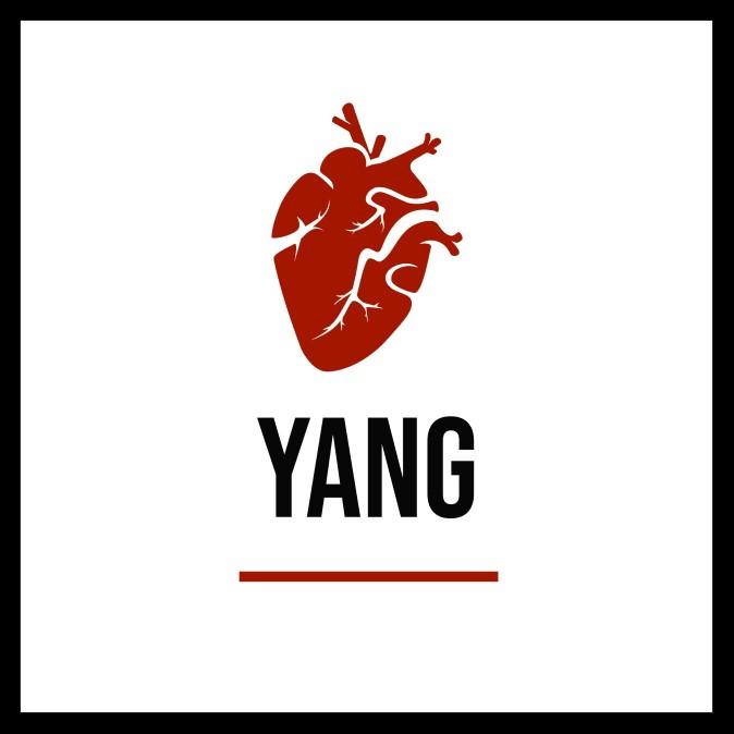 Quadro Cristina Yang Por Grey S Anatomy