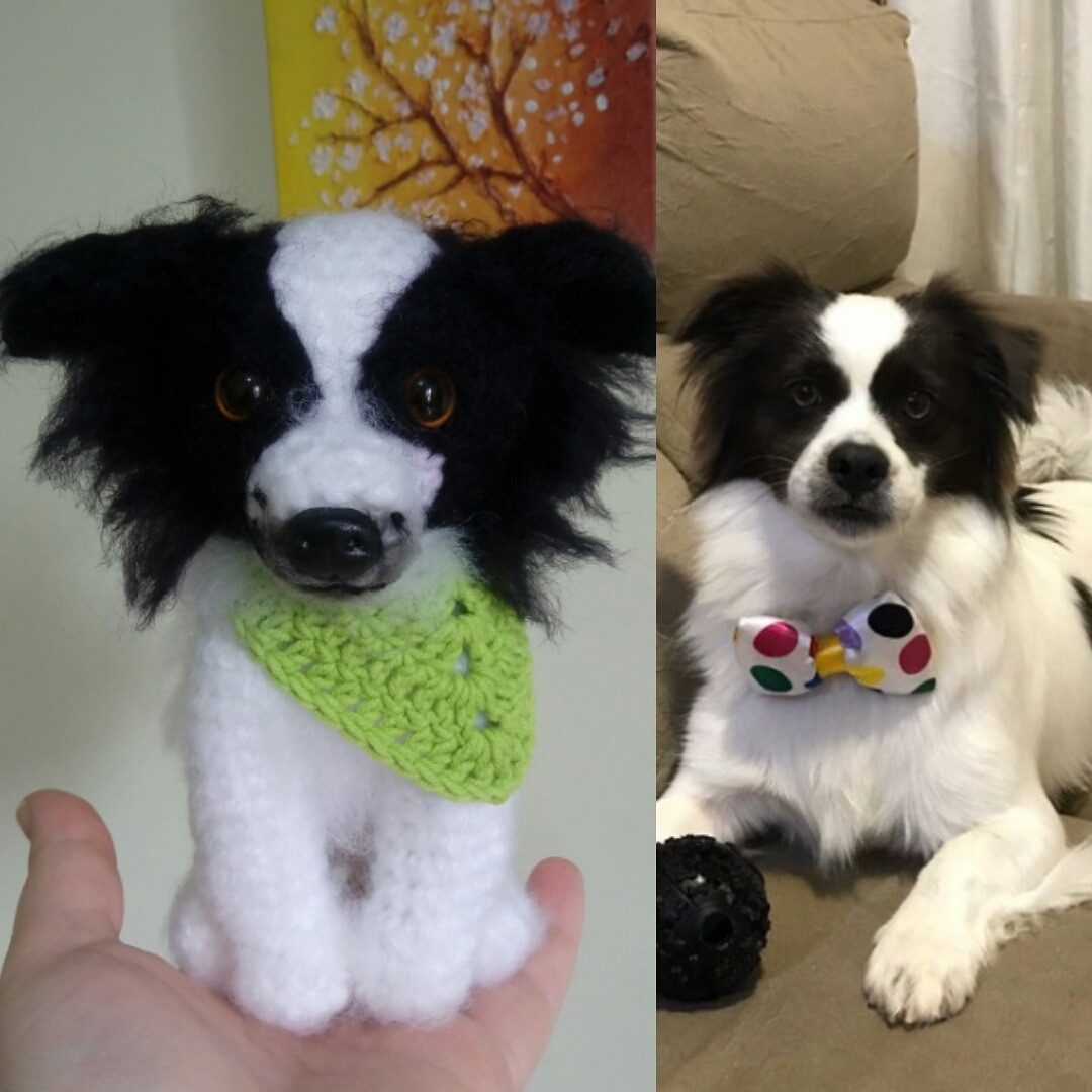 FO] Papillon Dog Amigurumi | Papillon dog, Papillon dog puppy ... | 1080x1080