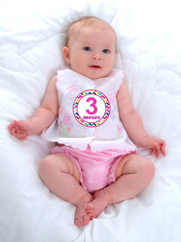 Excepcional Adesivos de 1 a 12 meses - Meninas no Elo7 | Grugrudada (3E87B8) RV53