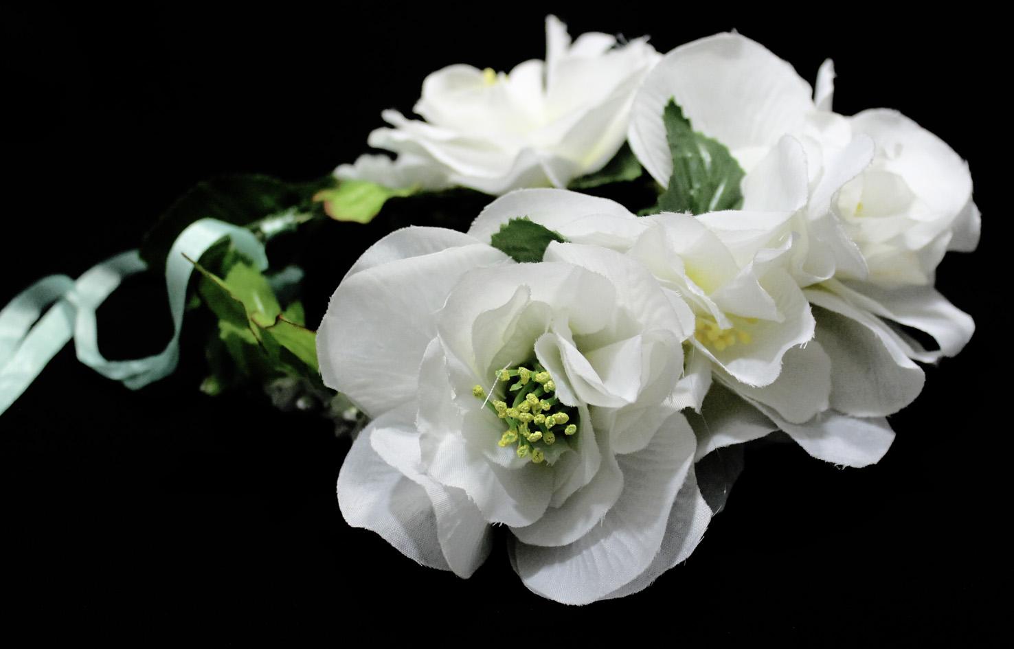 Resultado de imagem para imagens de flores brancas