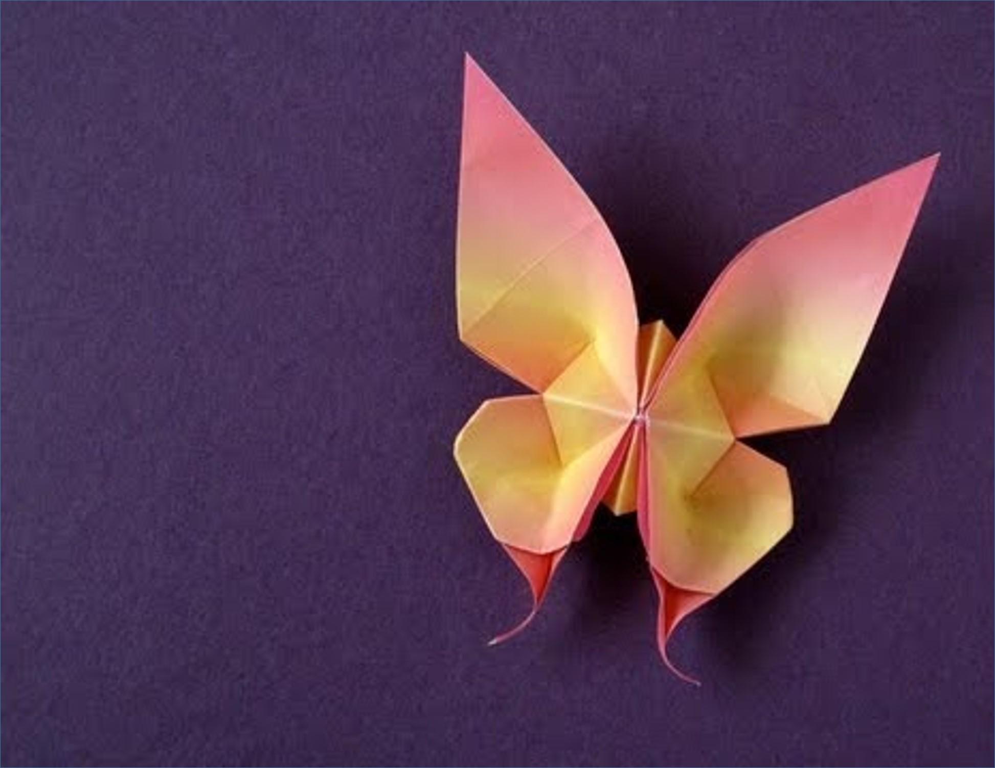 borboleta de origami com arame joice ateli amabile elo7. Black Bedroom Furniture Sets. Home Design Ideas