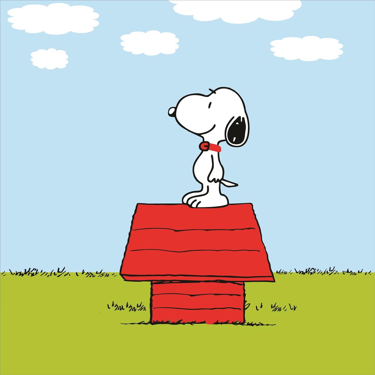 Snoopy Decoração - Adesivo No Elo7