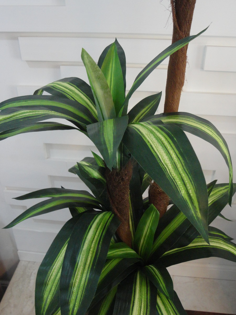 Planta artificial rvore dracena varieg flora gatai elo7 - Planta artificial ...