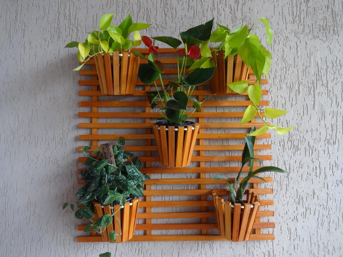 jardim vertical orquideas