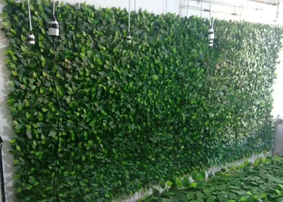 Muro ingl s 2 30x2 00 venda no elo7 ateli rafaela pinotti 7f4a6f - Jardin vertical artificial barato ...