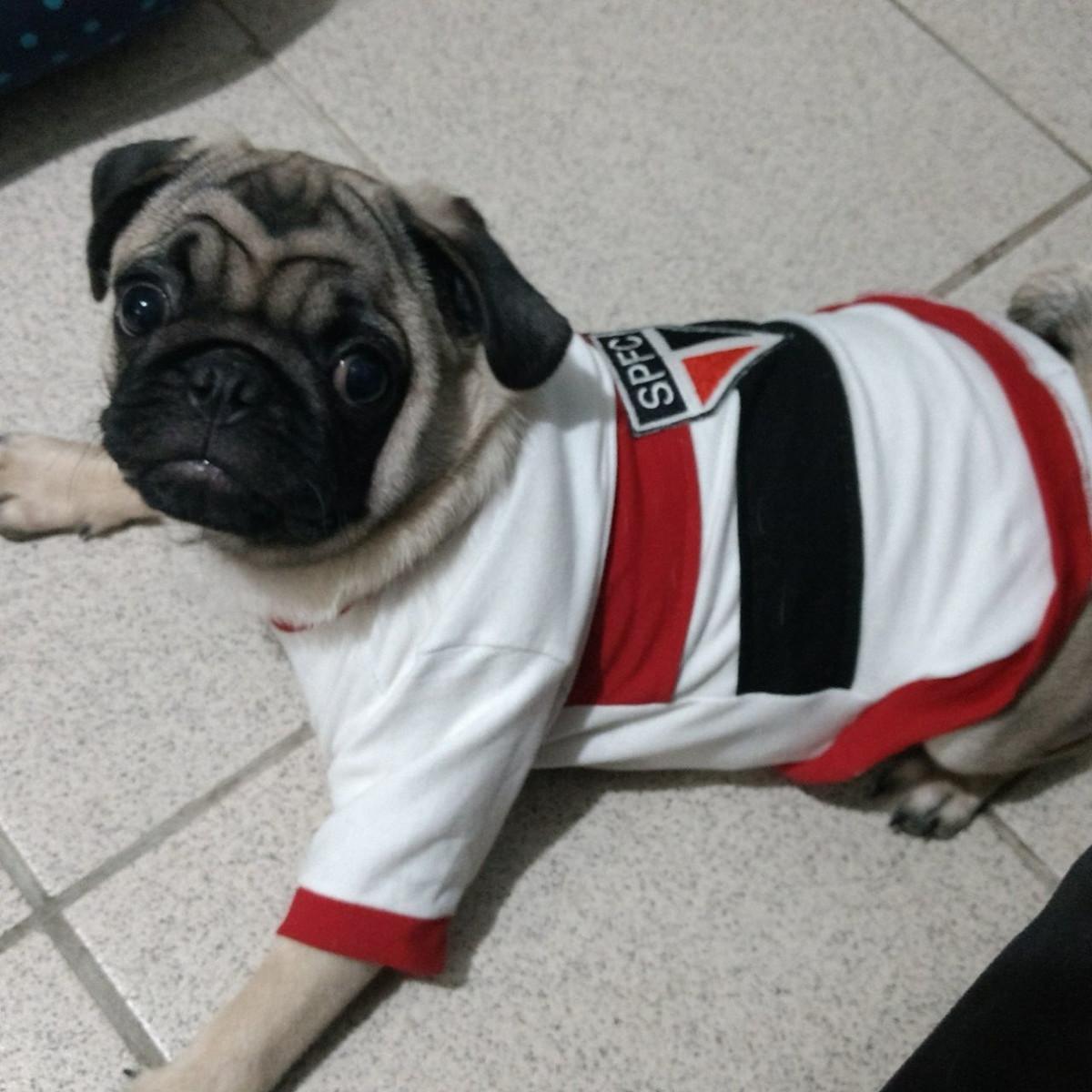 2ed32f2dc5 Camisa Pet São Paulo - Cachorro G e GG no Elo7