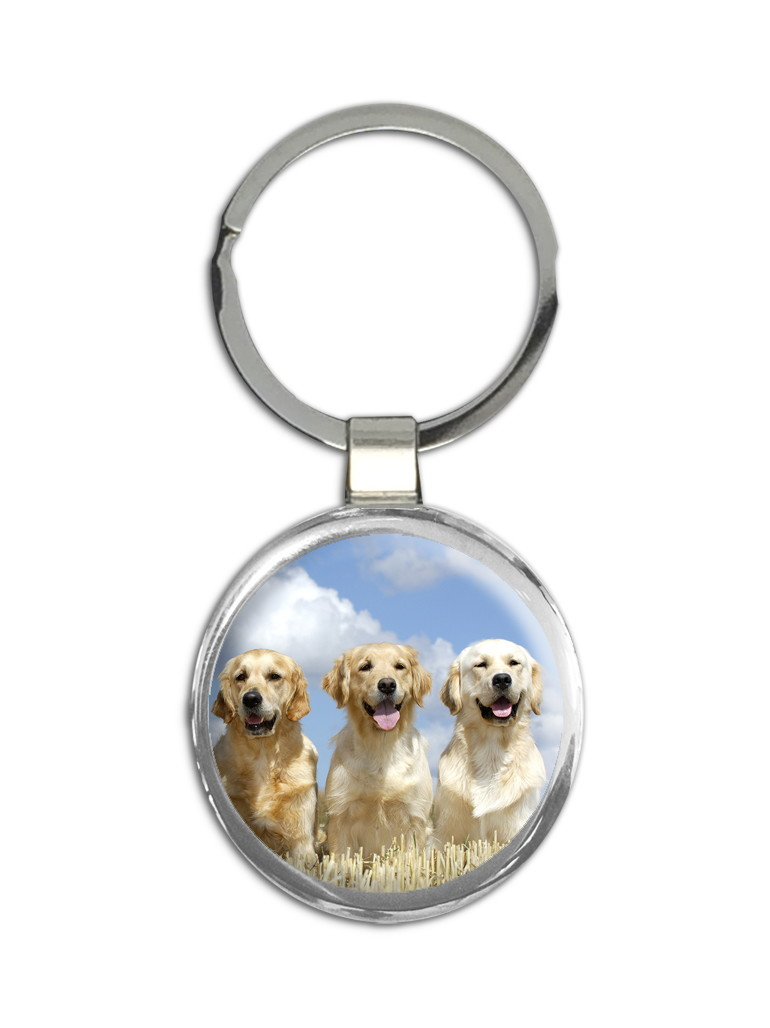 Chaveiro Labrador Golden Cachorro Ap242iaa015000595 No Elo7