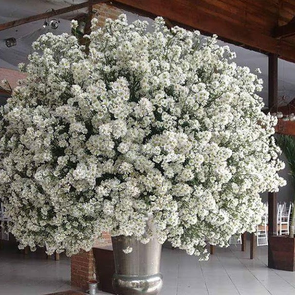 Arranjo flor natural p decoraç u00e3o de evento no Elo7 Requint Festas Decorações (BAE018) # Decoração De Bolo Com Flor Natural