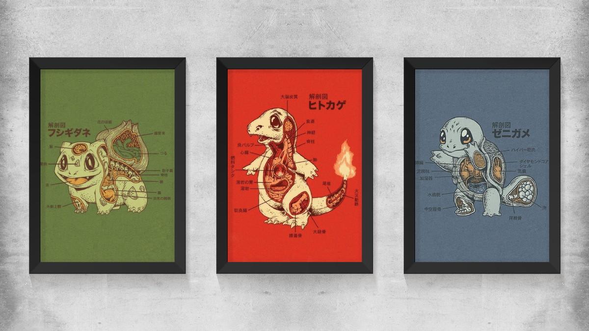 Coleção Quadros Pokemon - Anatomia Pokemon no Elo7 | Hech Art (C09F64)
