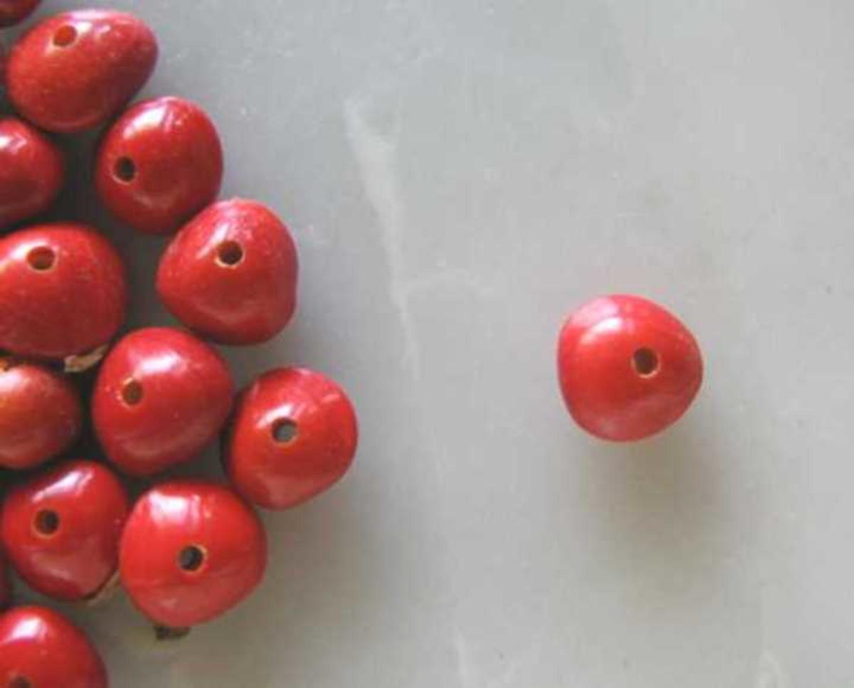 2c6654eab63 Sementes de pau brasil para bijuterias (500 sementes) no Elo7 ...