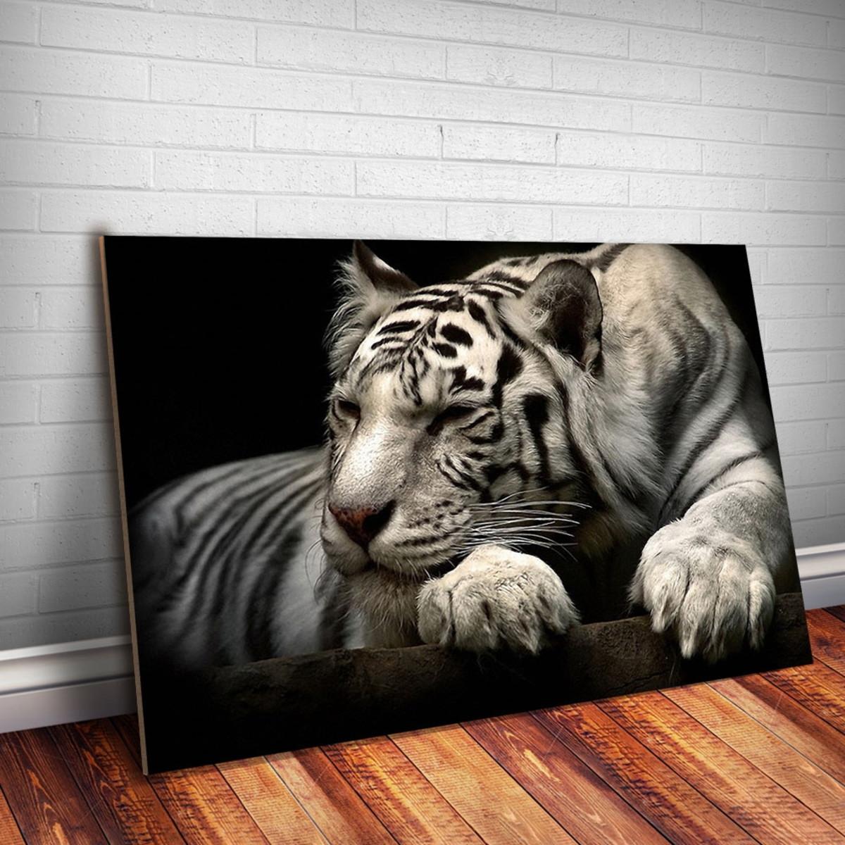 a74731b0e Placa decorativa Animais 22 Tigre Branco-30x20cm no Elo7