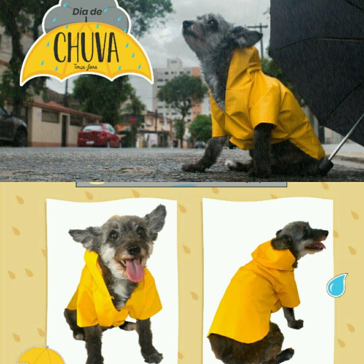 96067c6ac Capa de Chuva Pet para Cachorro Roupa Impermeável Pet no Elo7   Moda ...