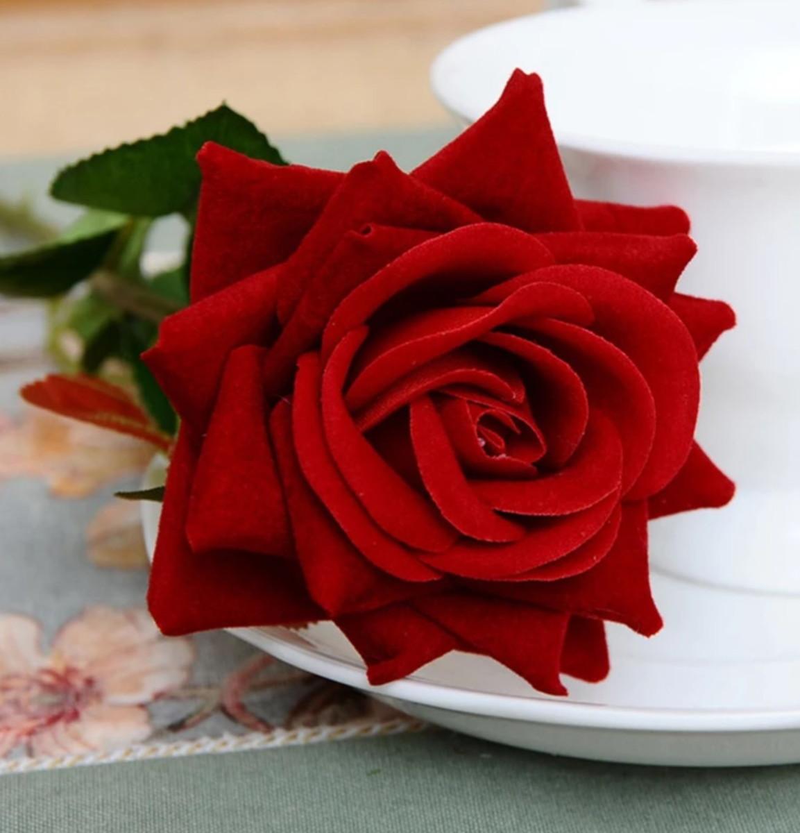 Rosa vermelha flor bonita — Fotografias de Stock ...  |Rosa Flor Vermelha