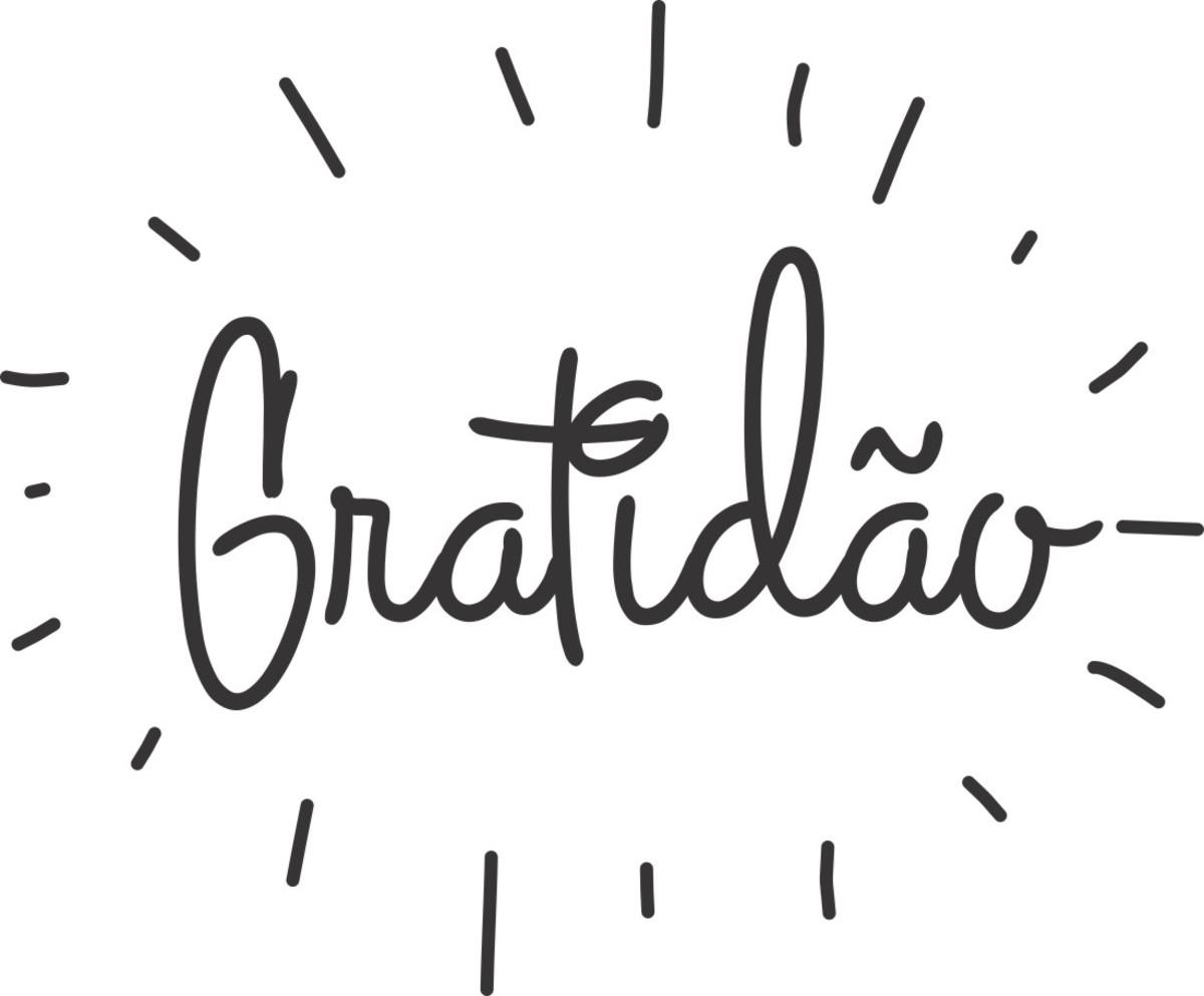 Adesivo Decorativo De Parede Frase Gratidão
