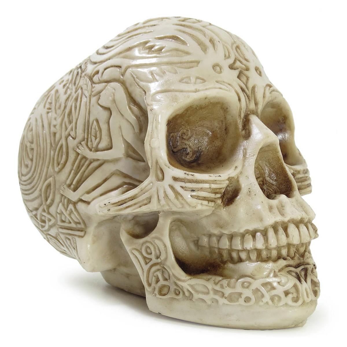 Cranio Caveira Realista Osso Tribal Resina Inca Esqueleto No Elo7