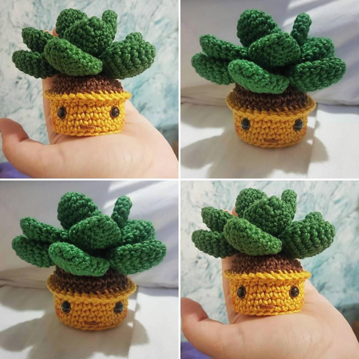 Suculenta tejida a crochet - YouTube | 1200x1200