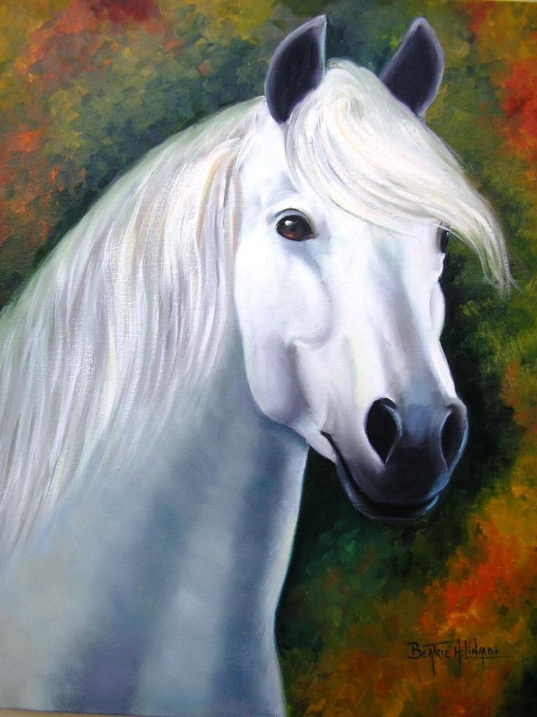 Cavalo branco no elo7 beatriz helena pintura em tela - Para ver fotos ...