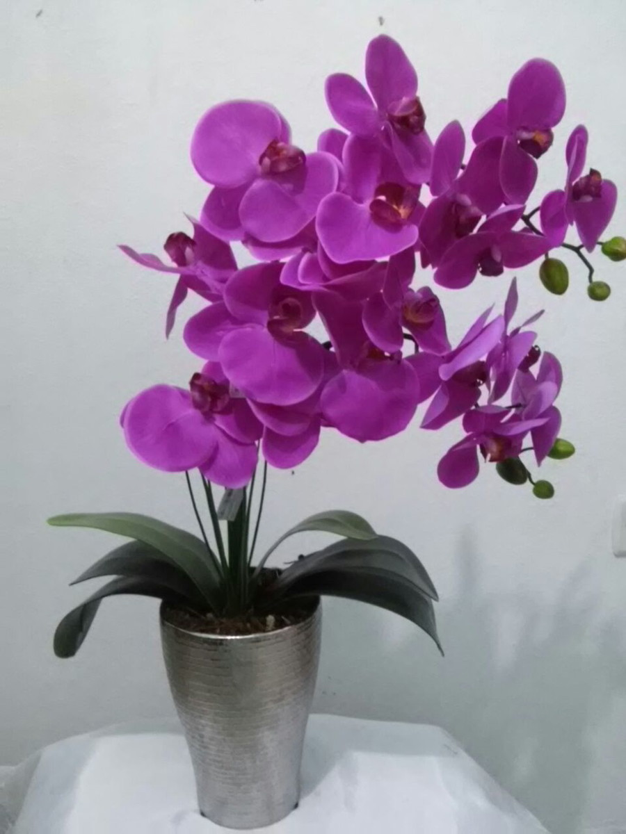 arranjos de orquideas silicone no elo7 valentina flores 578b4b