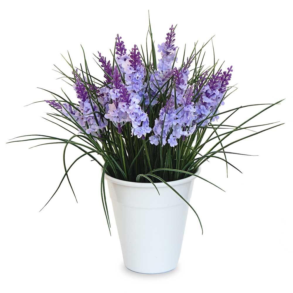 Arranjos De Flores Lavanda No Elo7 Felicitadecor 591799