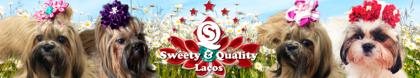 Sweety & Quality Laços